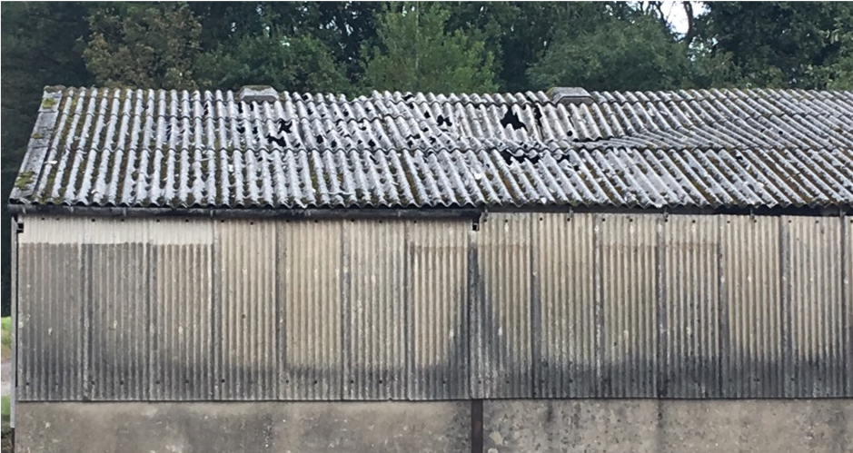 Asbestos In Roofs And Flat Roofs Strandek